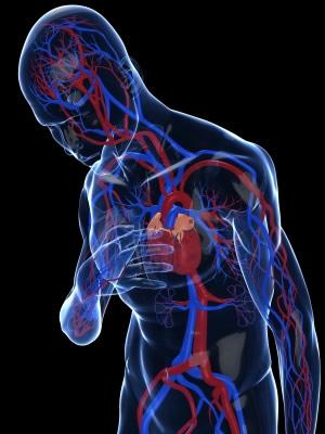 hjärtattack och d-vitamin